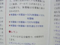2011071508.jpg